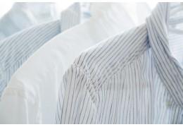 Camisas Y Blusas T-World Store